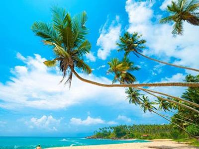 تور سریلانکا.amordadtour.ir